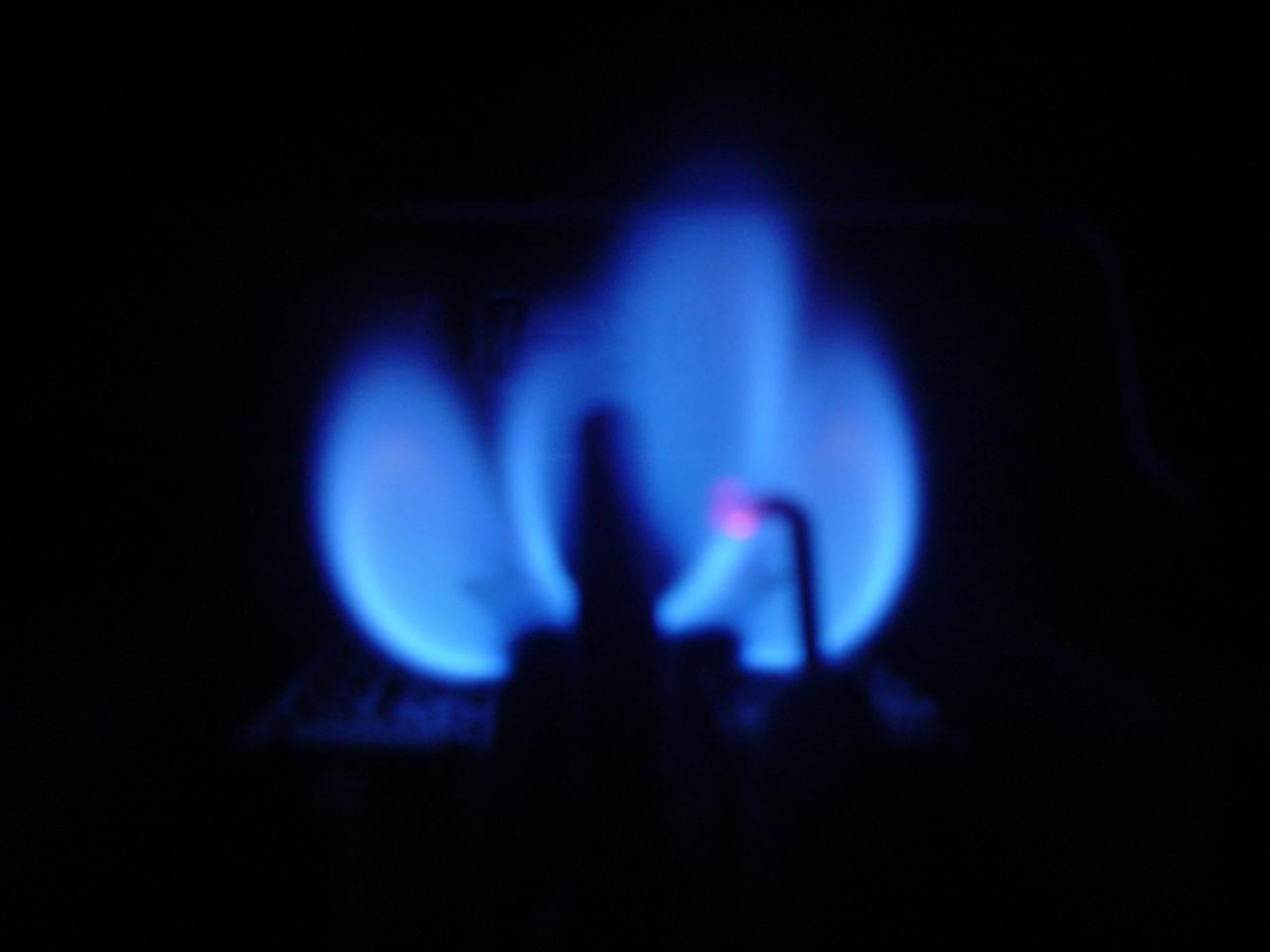 Z čeho se skládá regulovaná složka ceny plynu?